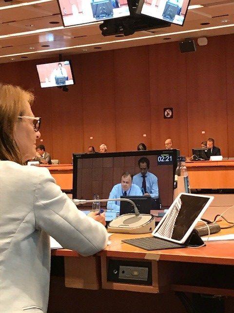 Pääjohtaja Timo Pesonen pitämässä tilannekatsausta poliittisten ja turvallisuusasioiden komiteassa.