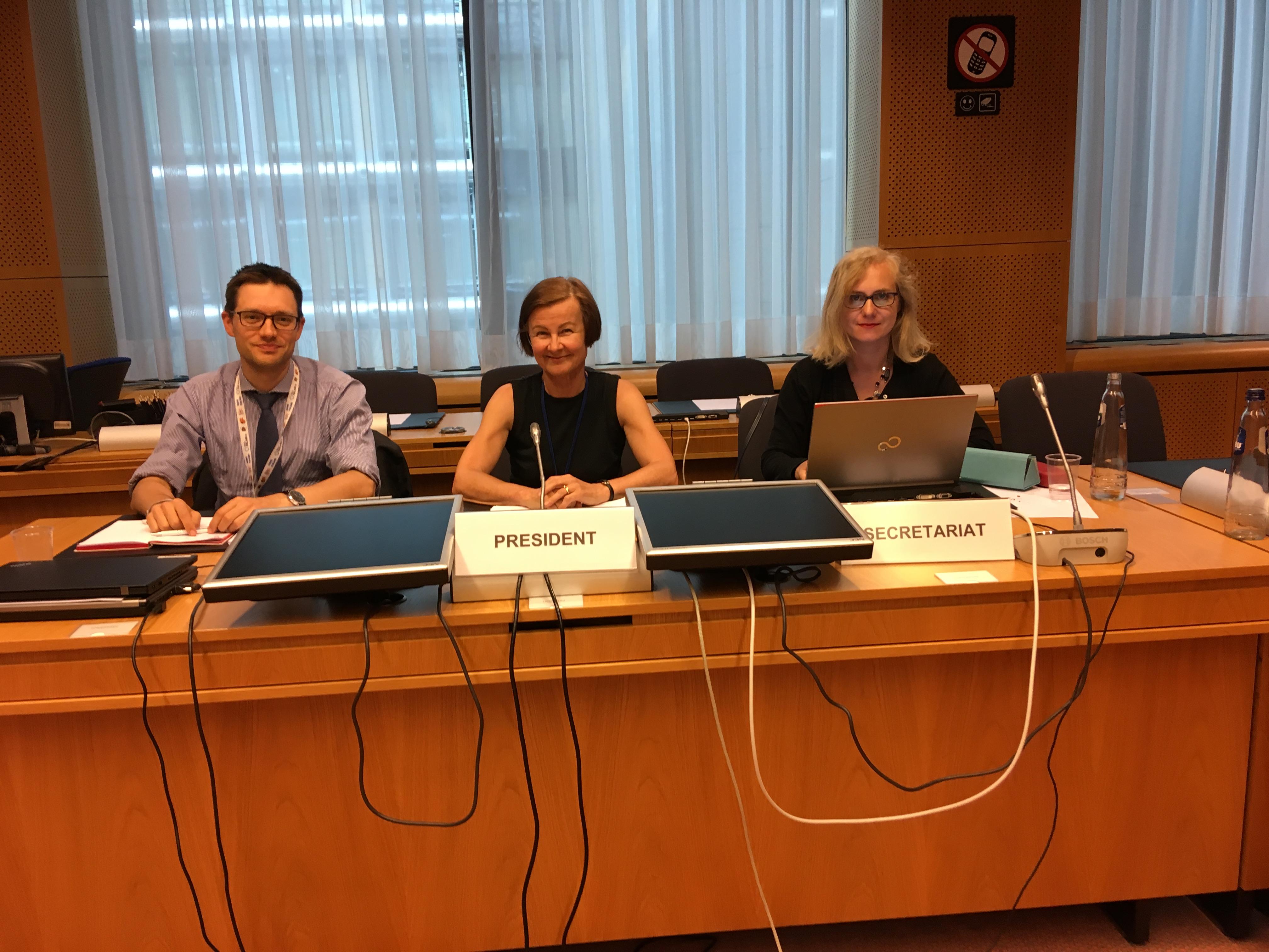 Kirjoittaja Olli Nurmi, työryhmän puheenjohtajana Suomen kaudella toiminut Merja Lindroos-Binham ja neuvoston sihteeristön Anna Lipska neuvottelupöydän takana.