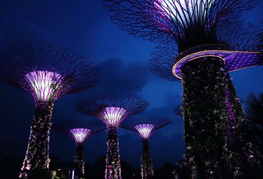 """50-metriset elektroniset """"superpuut"""" valaisevat öistä Gardens By the Bay -puistoa. Tiivisti rakennetussa utopistisessa tulevaisuuden kaupungissa voi aika ajoin luulla olevansa Avatar-elokuvan kulisseissa. Kuva: Elisa Kalliola."""
