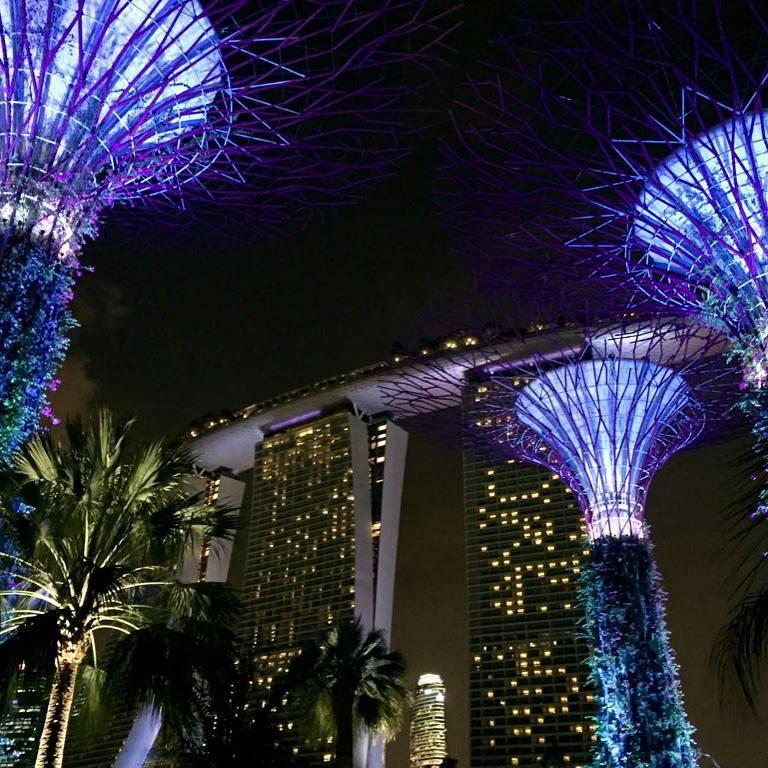 Singaporessa ei ole puutetta vilinästä ja vilskeestä. Gardens by the Bayn puut ovat superpuita. Kuva: Marica Salokangas.