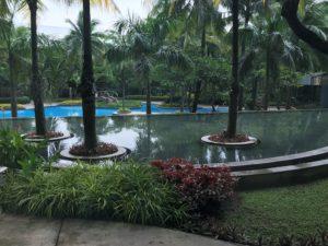 Kuva puutarhasta ja uima-altaasta.