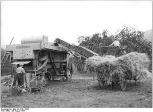 Martinsfeld, Dreschmaschine im Einsatz