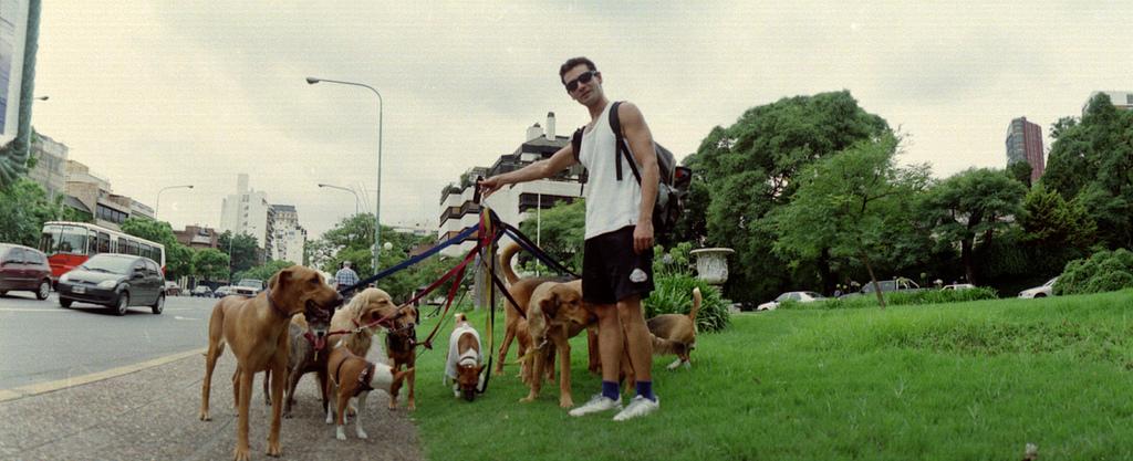 Koirien ulkoiluttaja Buenos Airesissa