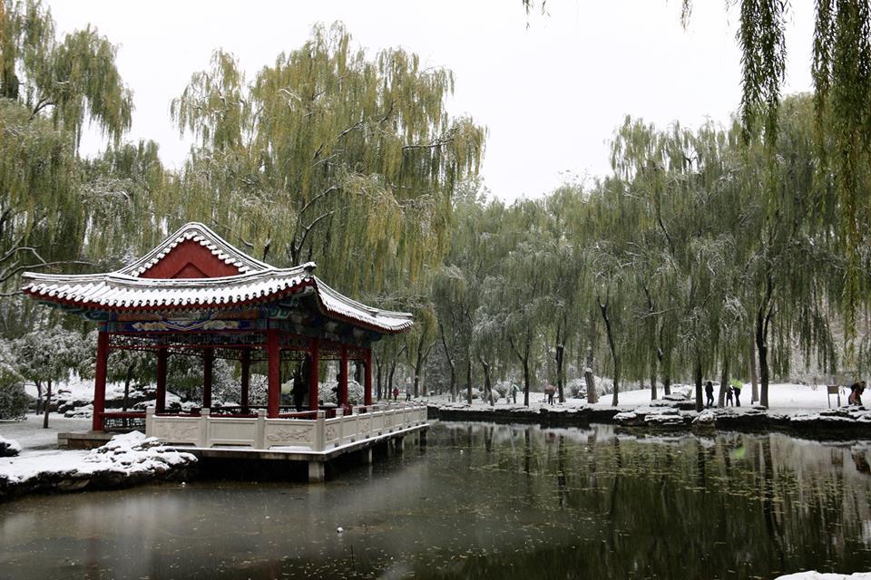 Ritan Park lumivaipassa. Kuva: Tarja Kangaskorte.