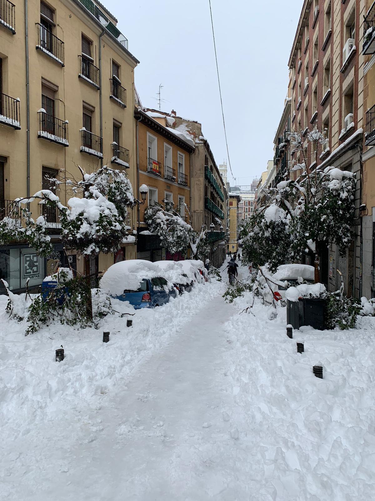 Kuva madridilaiselta kadulta lumimyrskyn jo tauottua. Kuva: Akseli Peltola
