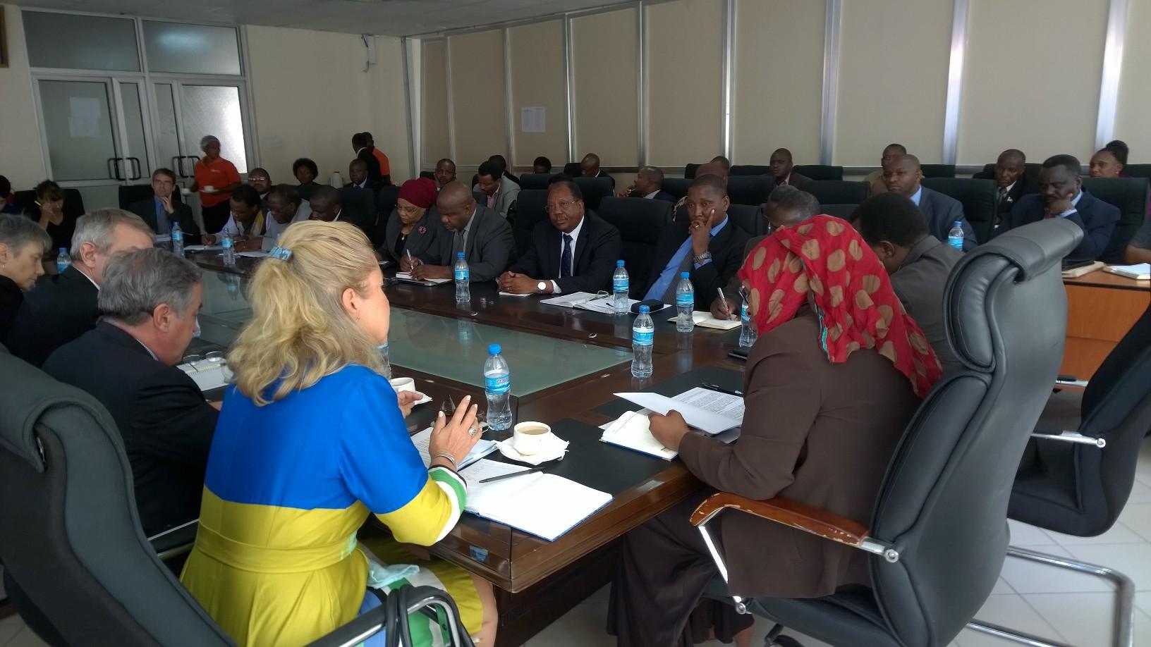 Budjettitukiavunantajien ja Tansanian hallituksen välinen korkean tason vuoropuhelu maaliskuussa 2015 Tansanian valtiovarainministerin johdolla