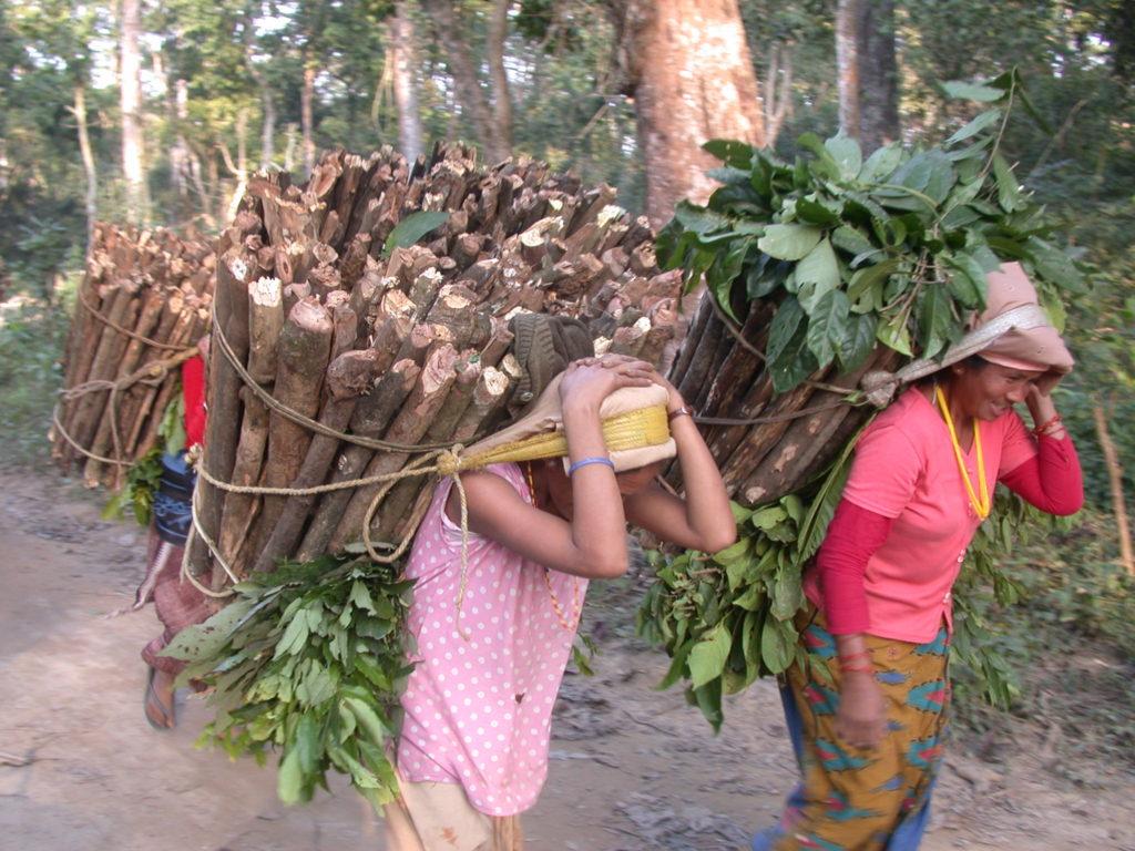 Raaka-ainepulan aikaan nepalilaiset joutuivat käyttämään kaasun sijaan polttopuita ruoanvalmistukseen. Kuva: Chudamani Joshi/UM
