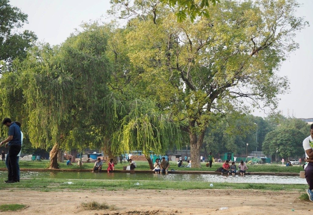Delhistä ei puistoja ja vihreyttä puutu, vaikka toisin voisi luulla. Kuva: Saana Annala.