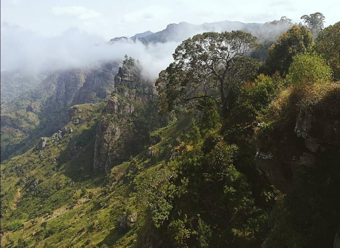 Lushoton vuoristoa Pohjois-Tansaniassa. Kuva: Fanni Mäkinen.