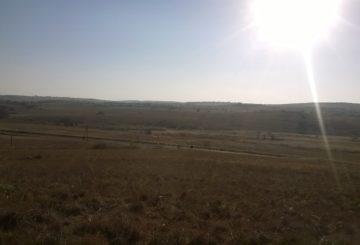 Pretoriassa on keskimäärin yli kahdeksan tuntia auringonpaistetta päivässä. Kuva Päivi Lehtonen.