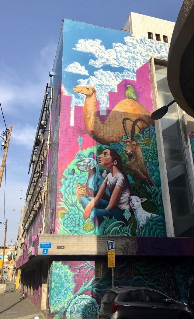 Osa rakennuksista on koristeltu lähes kokonaan värikkäillä taideteoksilla (kuva: Elina Piittala)