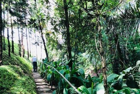 Indonesian luonto on upea.